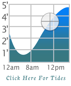 tide_icon_graph